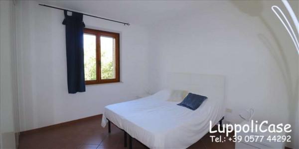 Appartamento in affitto a Murlo, Arredato, con giardino, 140 mq - Foto 16