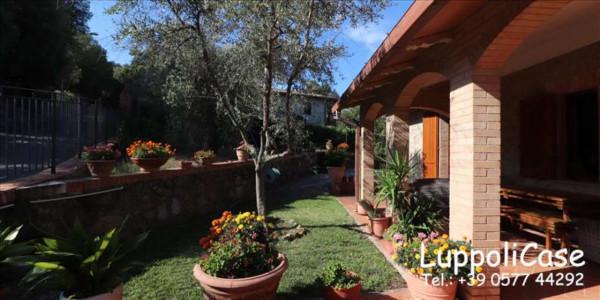 Appartamento in affitto a Murlo, Arredato, con giardino, 140 mq - Foto 24