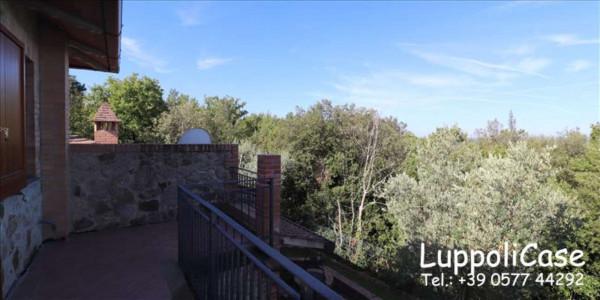 Appartamento in affitto a Murlo, Arredato, con giardino, 140 mq - Foto 7