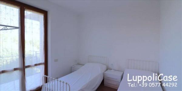Appartamento in affitto a Murlo, Arredato, con giardino, 140 mq - Foto 6