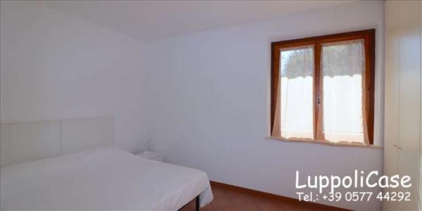 Appartamento in affitto a Murlo, Arredato, con giardino, 140 mq - Foto 12
