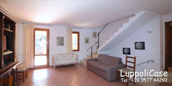 Appartamento in affitto a Murlo, Arredato, con giardino, 140 mq - Foto 22