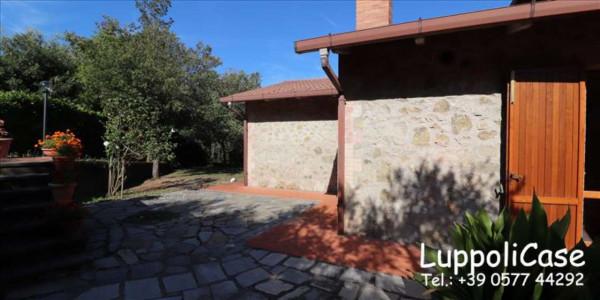Appartamento in affitto a Murlo, Arredato, con giardino, 140 mq - Foto 26
