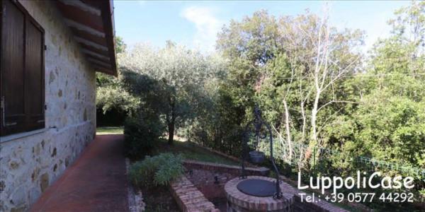 Appartamento in affitto a Murlo, Arredato, con giardino, 140 mq - Foto 29