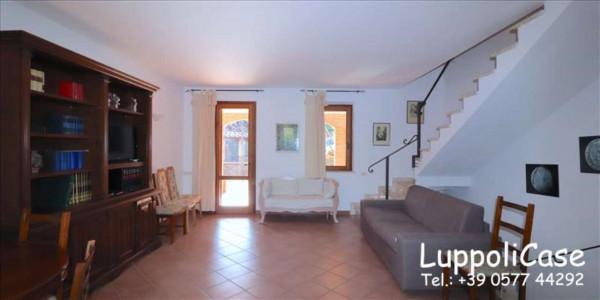 Appartamento in affitto a Murlo, Arredato, con giardino, 140 mq - Foto 21