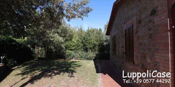 Appartamento in affitto a Murlo, Arredato, con giardino, 140 mq - Foto 27