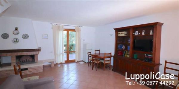 Appartamento in affitto a Murlo, Arredato, con giardino, 140 mq - Foto 13