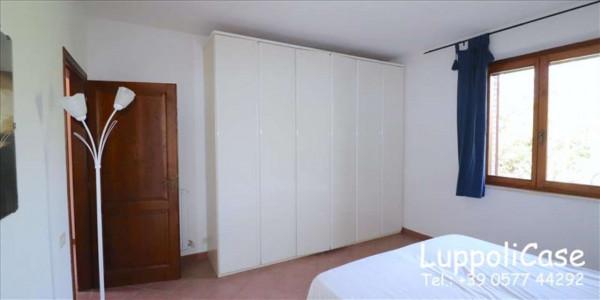 Appartamento in affitto a Murlo, Arredato, con giardino, 140 mq - Foto 15