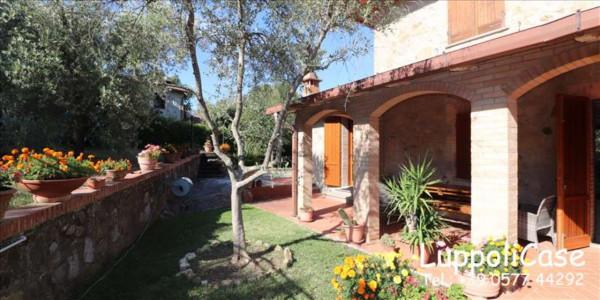 Appartamento in affitto a Murlo, Arredato, con giardino, 140 mq - Foto 25