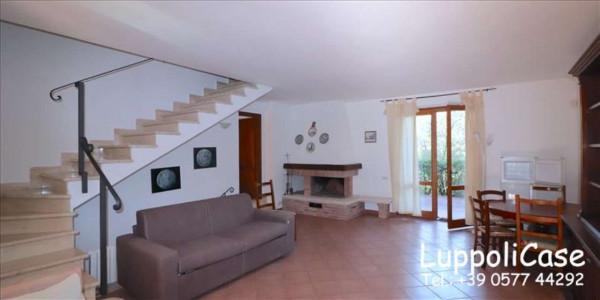 Appartamento in affitto a Murlo, Arredato, con giardino, 140 mq - Foto 23