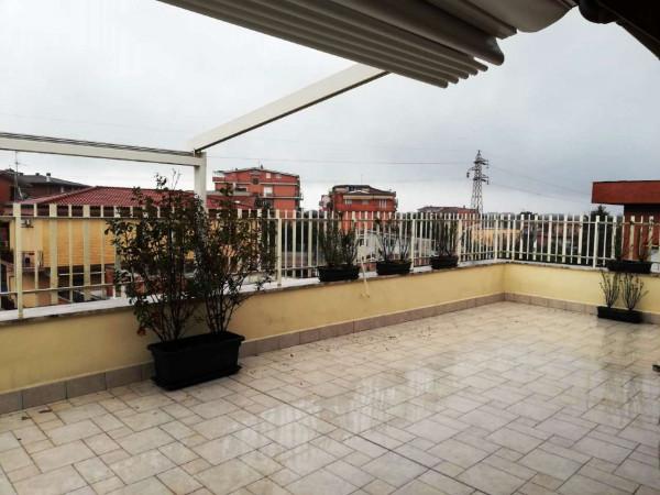 Appartamento in affitto a Roma, Palmarola, 65 mq