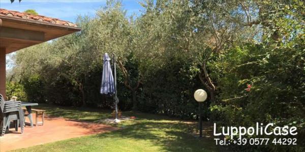Villa in vendita a Castelnuovo Berardenga, Con giardino, 146 mq