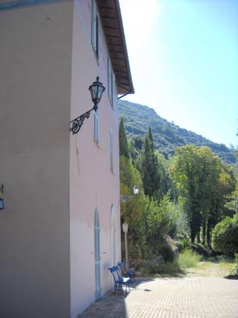 Locale Commerciale  in vendita a Spoleto, 670 mq - Foto 10