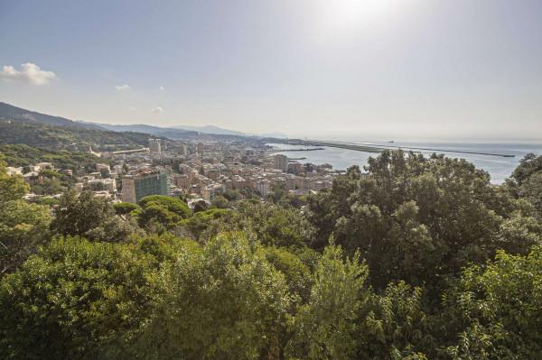 Villa in vendita a Genova, Pegli, Arredato, con giardino, 200 mq - Foto 22