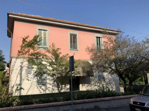 Locale Commerciale  in vendita a Tavazzano con Villavesco, Stazione, Con giardino, 900 mq - Foto 3
