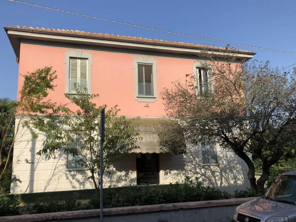 Locale Commerciale  in vendita a Tavazzano con Villavesco, Stazione, Con giardino, 900 mq - Foto 2