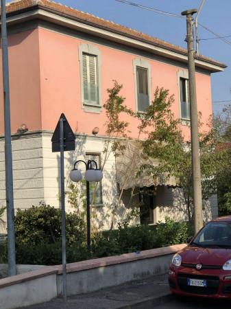 Locale Commerciale  in vendita a Tavazzano con Villavesco, Stazione, Con giardino, 900 mq - Foto 4