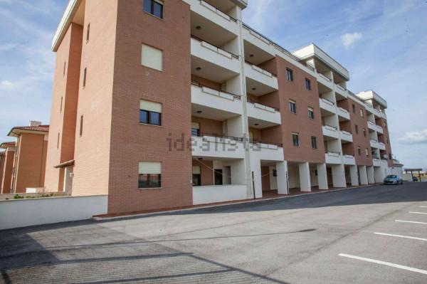 Appartamento in affitto a Roma, Colle Degli Abeti - Ponte Di Nona, 51 mq