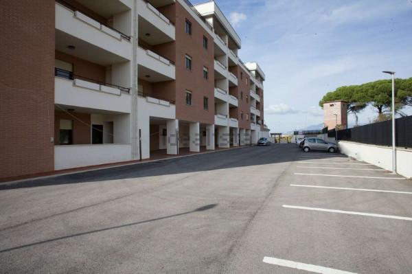 Appartamento in affitto a Roma, Colle Degli Abeti - Ponte Di Nona, 51 mq - Foto 4
