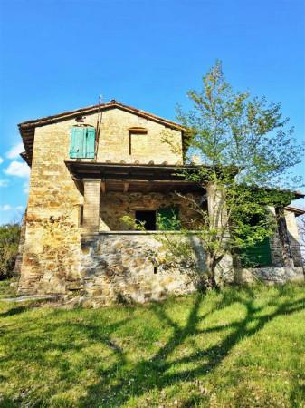 Rustico/Casale in vendita a Città di Castello, Con giardino, 450 mq - Foto 8