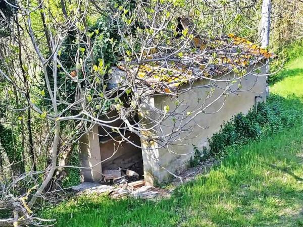 Rustico/Casale in vendita a Città di Castello, Con giardino, 450 mq - Foto 9