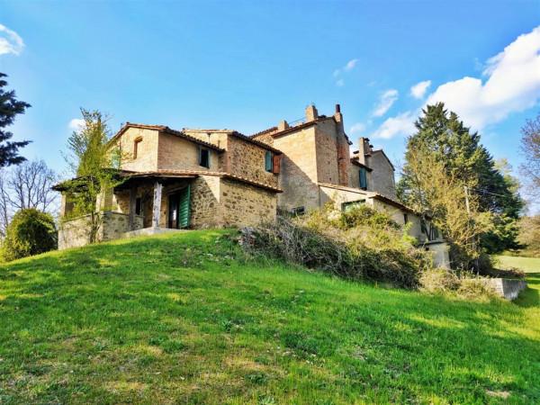 Rustico/Casale in vendita a Città di Castello, Con giardino, 450 mq