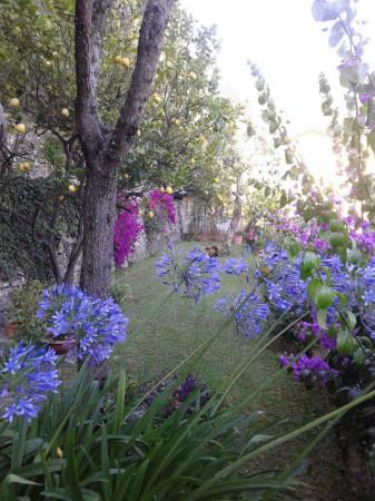 Appartamento in vendita a Sori, Residenziale, Con giardino, 85 mq - Foto 27