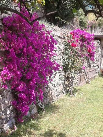 Appartamento in vendita a Sori, Residenziale, Con giardino, 85 mq - Foto 24