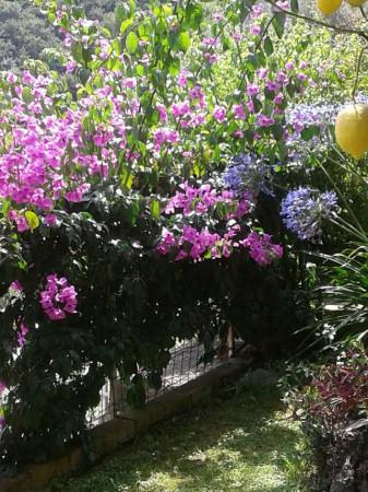 Appartamento in vendita a Sori, Residenziale, Con giardino, 85 mq - Foto 6