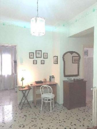 Appartamento in affitto a Roma, Tor Vergata, Arredato, 40 mq - Foto 3