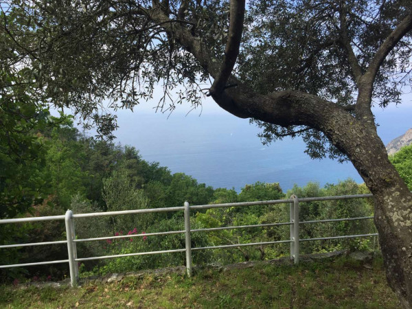 Villa in vendita a Framura, Foce, Arredato, con giardino, 130 mq - Foto 2