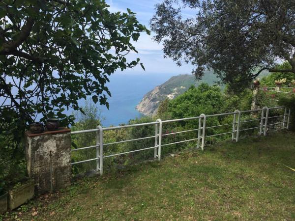 Villa in vendita a Framura, Foce, Arredato, con giardino, 130 mq - Foto 13