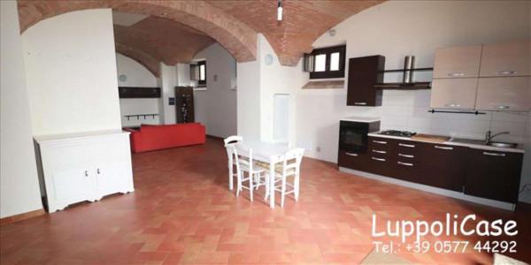 Appartamento in vendita a Siena, Con giardino, 190 mq - Foto 15