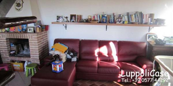 Appartamento in vendita a Sovicille, Con giardino, 157 mq - Foto 6