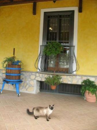 Villa in vendita a Lanuvio, Campoleone, 460 mq - Foto 37