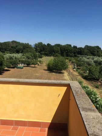 Villa in vendita a Lanuvio, Campoleone, 460 mq - Foto 15