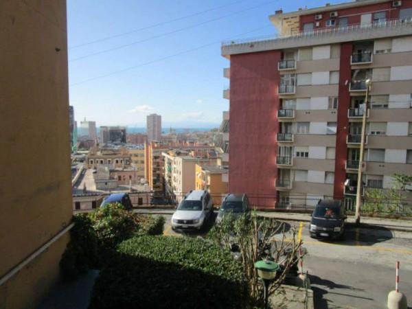 Appartamento in affitto a Genova, Sampierdarena Alta, 70 mq - Foto 7