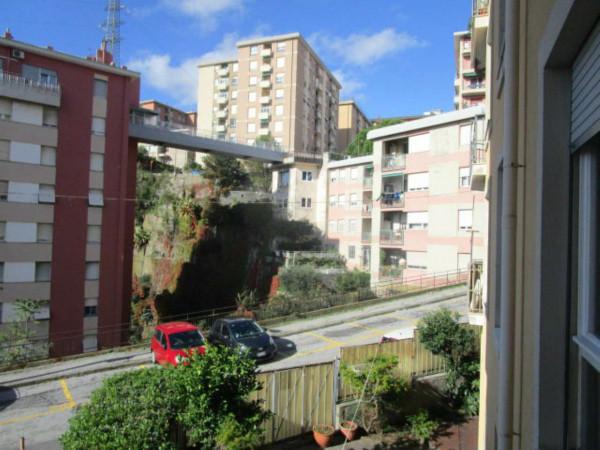 Appartamento in affitto a Genova, Sampierdarena Alta, 70 mq - Foto 6