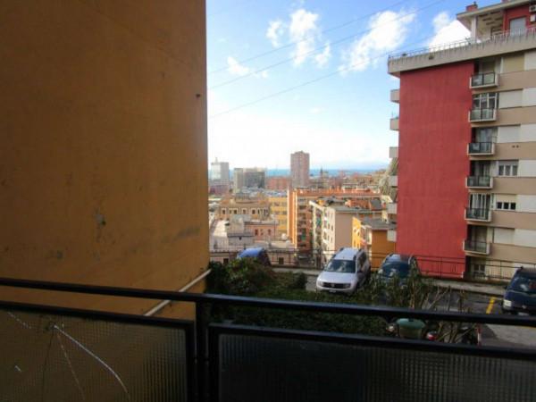 Appartamento in affitto a Genova, Sampierdarena Alta, 70 mq - Foto 8