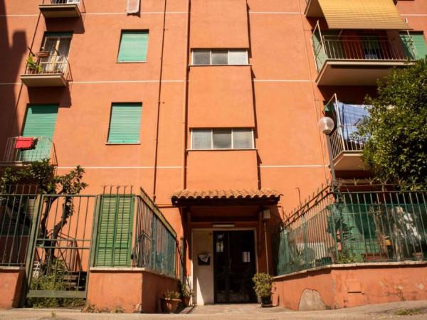 Appartamento in vendita a Roma, Tuscolana, Arredato, con giardino, 115 mq - Foto 4