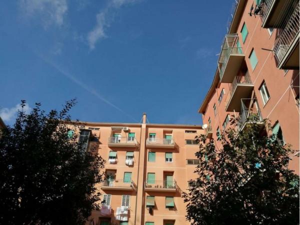 Appartamento in vendita a Roma, Tuscolana, Arredato, con giardino, 115 mq - Foto 2