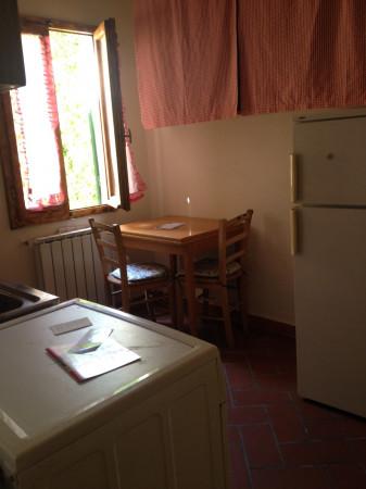 Bilocale in affitto a Firenze, San Frediano, 40 mq - Foto 4