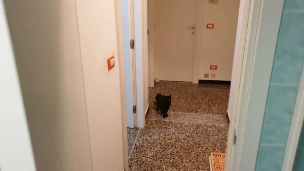 Appartamento in vendita a Genova, Adiacenze Via Casata Centuriona, 110 mq - Foto 14