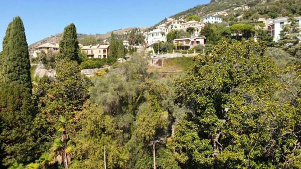Appartamento in vendita a Genova, Adiacenze Parchi Di Nervi E Passeggiata A Mare, Arredato, con giardino, 86 mq - Foto 2