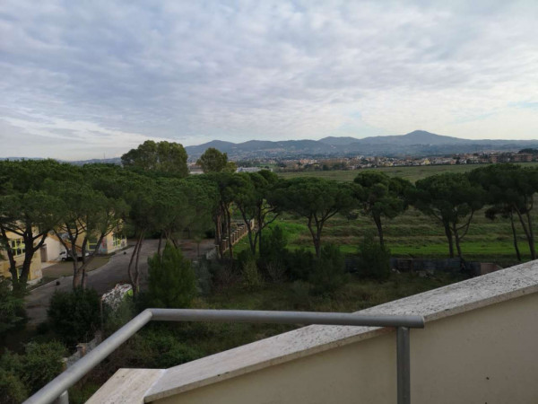 Appartamento in affitto a Roma, Tor Di Mezzavia - Foto 12