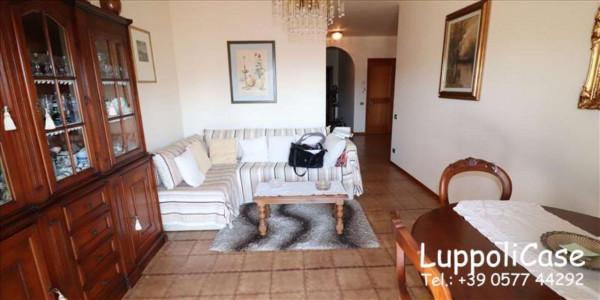 Appartamento in vendita a Castelnuovo Berardenga, Arredato, 92 mq - Foto 19