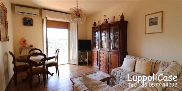 Appartamento in vendita a Castelnuovo Berardenga, Arredato, 92 mq