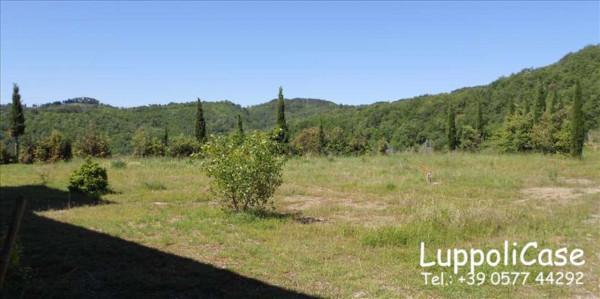 Villa in vendita a Castelnuovo Berardenga, Arredato, con giardino, 500 mq - Foto 3