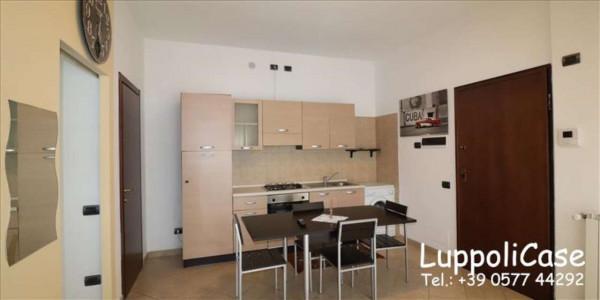 Appartamento in vendita a Siena, 36 mq - Foto 10