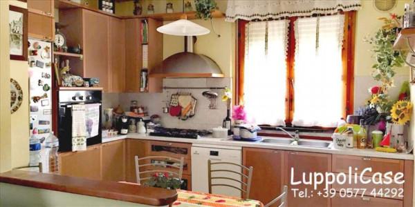 Appartamento in vendita a Follonica, 85 mq - Foto 5